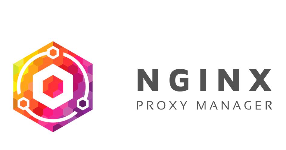 Nginx Proxy Manager - установка SSL и прокси на unRAID 6.8.3 1