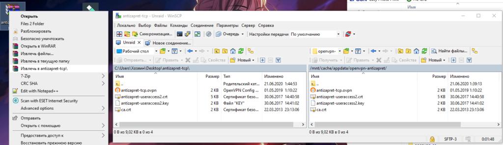 VPN и Proxy - необходимые контейнеры на unRAID 6.8.3 12